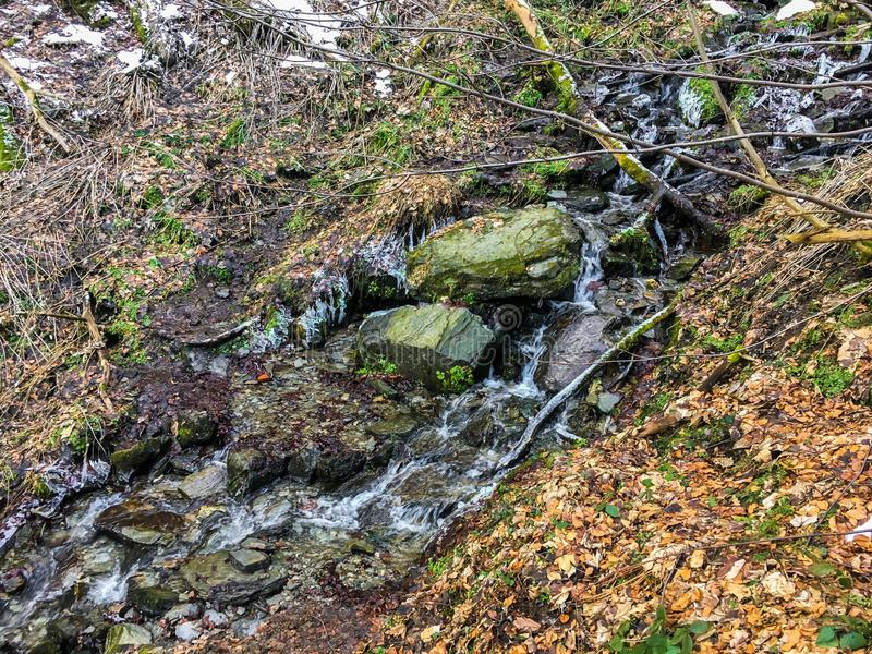 Córrego pequeno com rochas e sincelos congelados da água mas ainda fluência em uma paisagem da floresta na estação do inverno imagem de stock royalty free