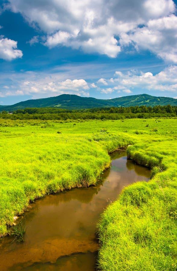 Córrego pequeno e montanhas distantes em Canaan Valley State Park, fotografia de stock
