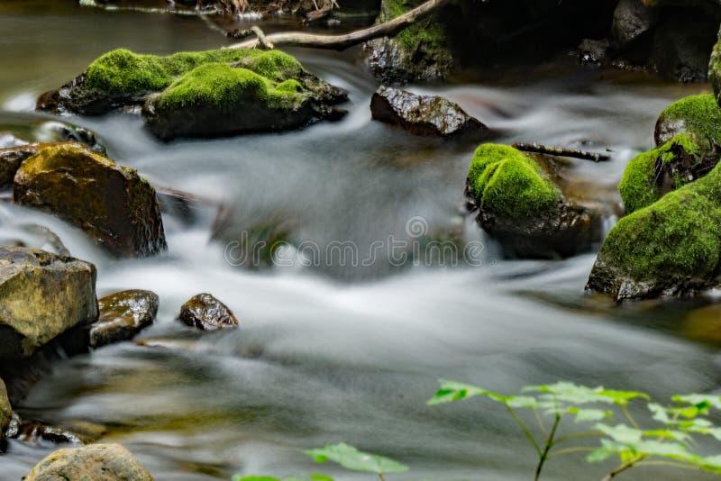 Córrego, rochas e musgo - 3 imagens de stock royalty free