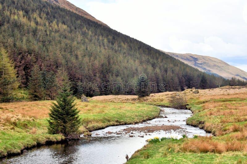 Córrego selvagem na paisagem de montanhas de Escócia imagens de stock royalty free