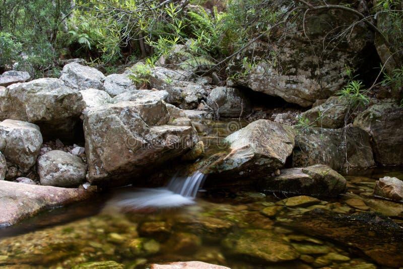 Córrego tranquilo da água fresca fotos de stock