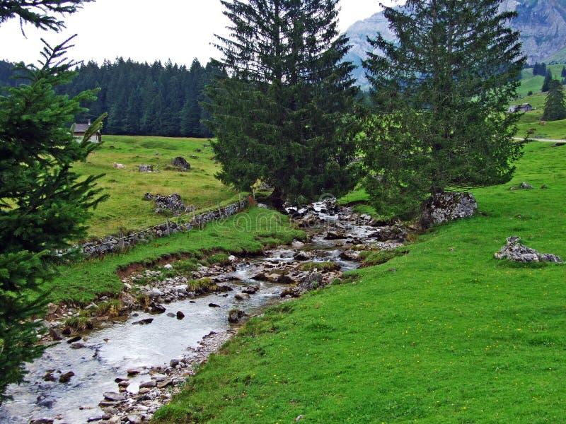 Córregos alpinos no pé da passagem de montanha de Schwägalp foto de stock