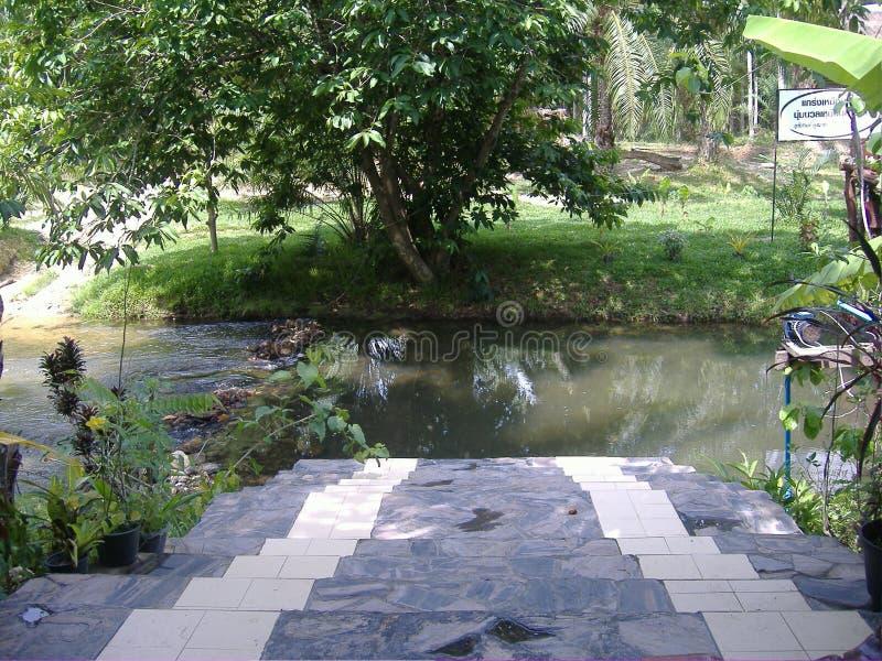 Córregos da água imagem de stock royalty free