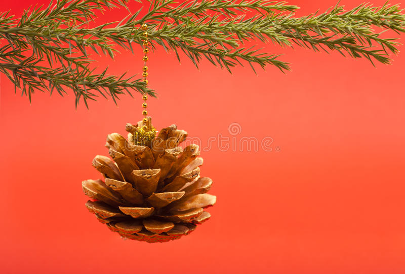 Cône de pin de Noël photo stock