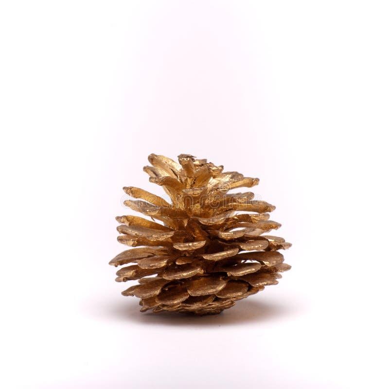 Cône de sapin de Noël photos stock