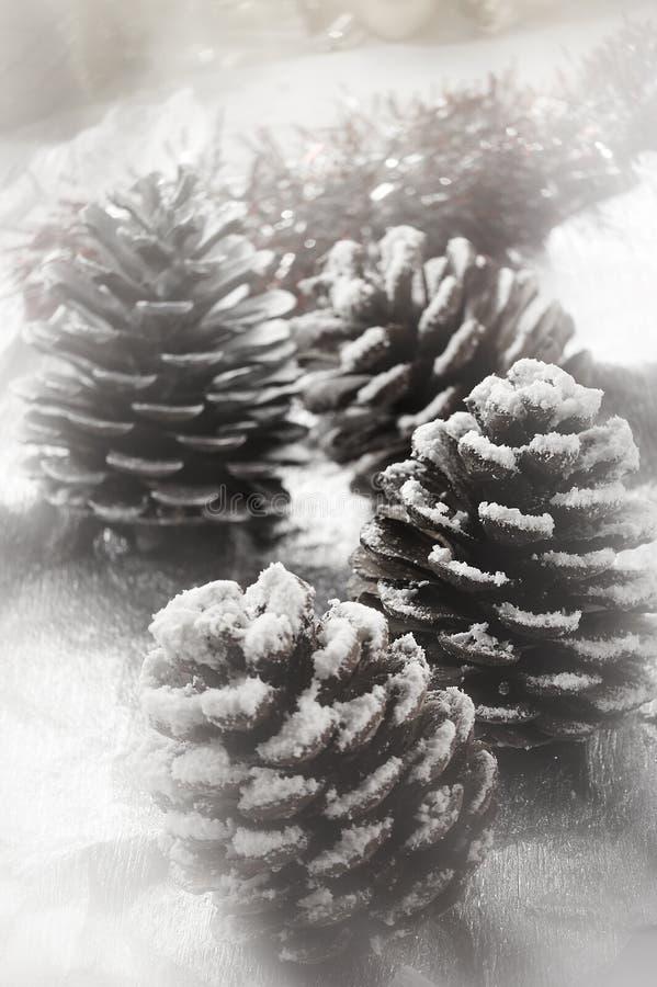 Cône de sapin de Noël photographie stock