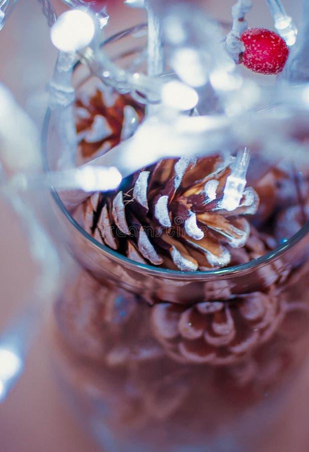 cônes dans un vase en verre avec une guirlande photos stock
