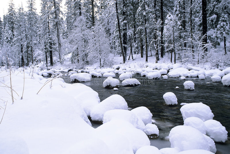 Cônes de neige images stock