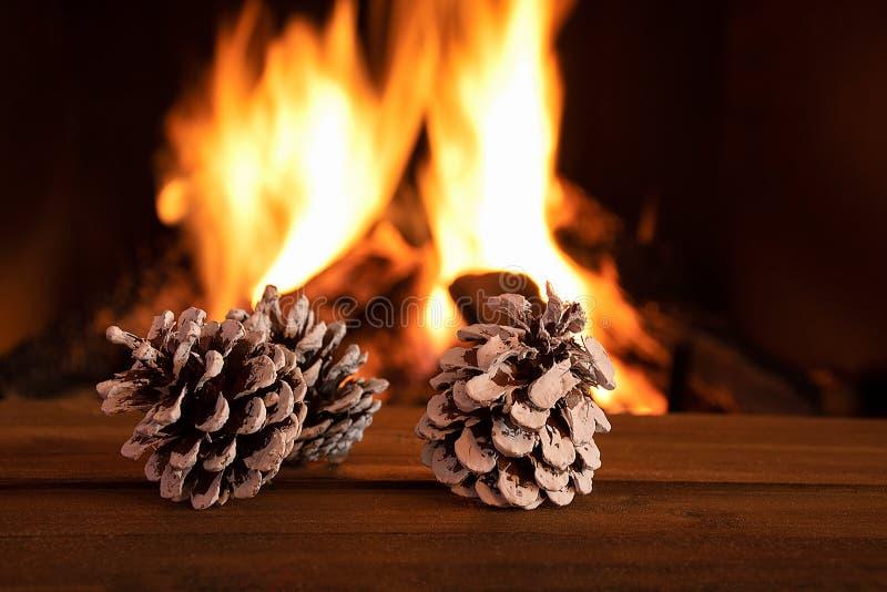 Cônes de pin avec fond de cheminée image libre de droits