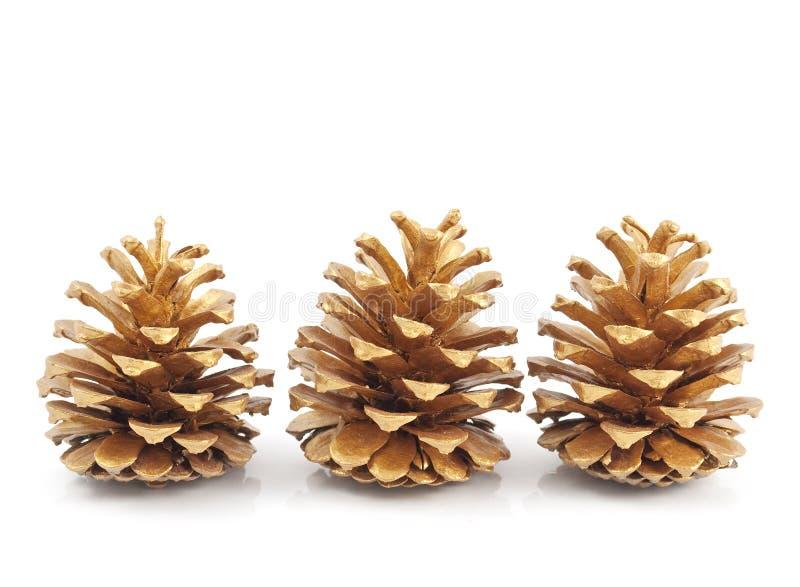 Cônes de pin d'or photo libre de droits