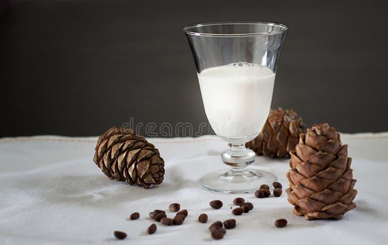 Cônes en verre de lait et de cèdre de vegan de pignons Fond blanc De végétarien lait organique d'écrous de journal intime non image libre de droits