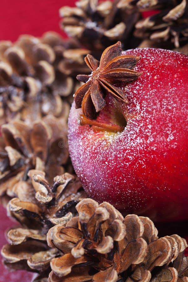 Cônes rouges de pomme et de pin de l'hiver photographie stock