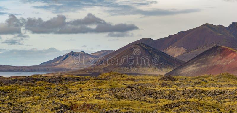 Cônes volcaniques de l'Islande photo libre de droits
