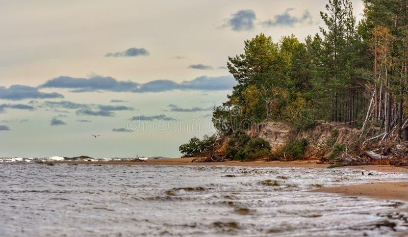 Côté letton de mer baltique près de capitale de Riga photographie stock libre de droits