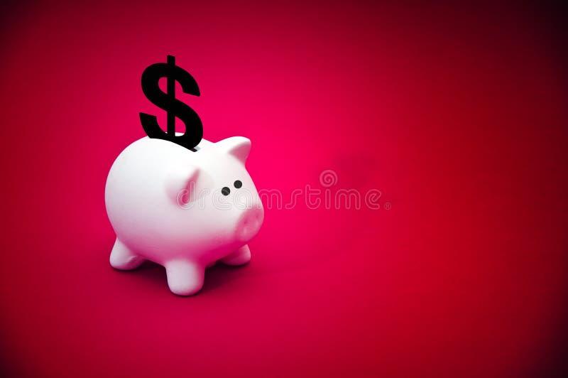 Côté porcin d'argent photos stock