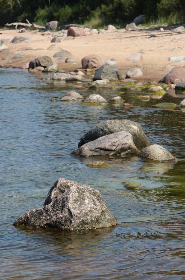 Côte à marée basse photo stock