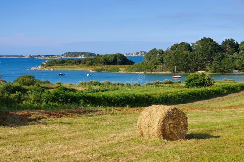 Côte d'Anse de Pellinec en Bretagne image libre de droits
