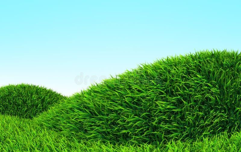 Côte d'herbe illustration stock