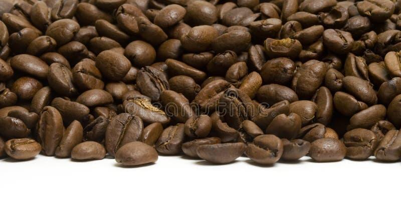 Côte de café photographie stock