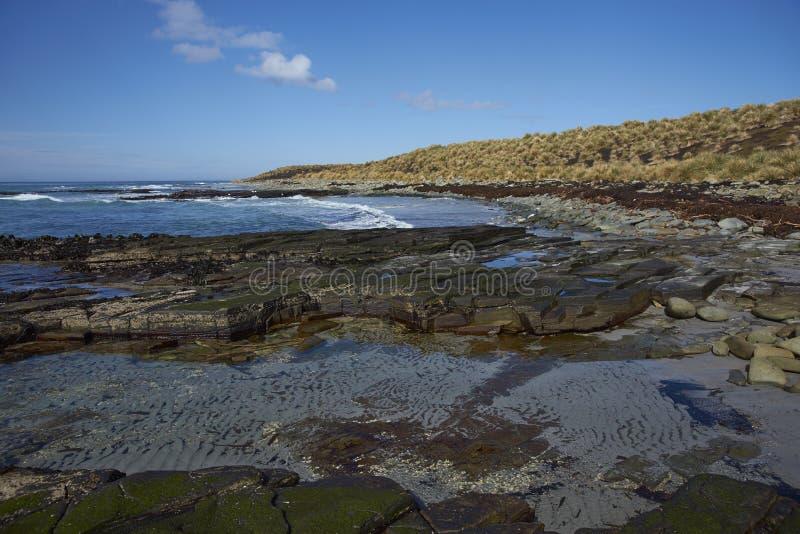 Côte de Falkland Islands photographie stock