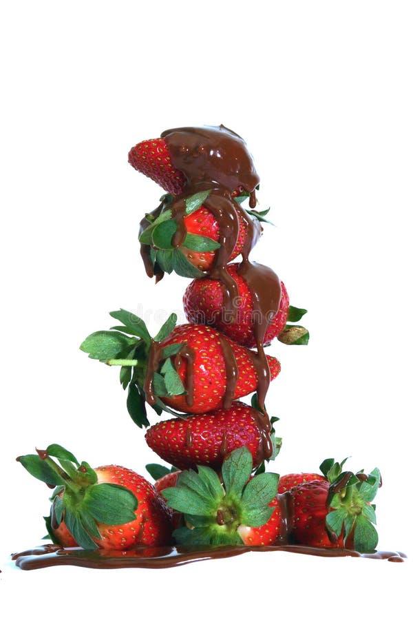 Côte de fraise photo stock
