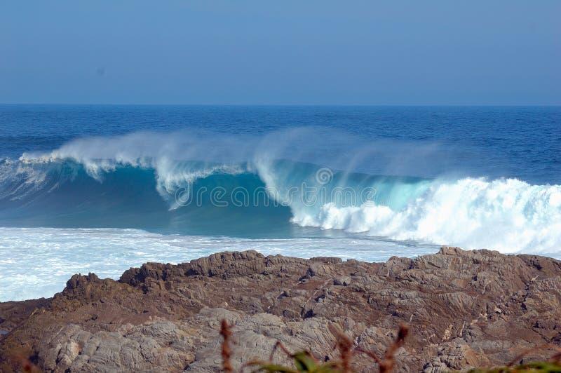 côte de l'Afrique au sud sauvage photos stock