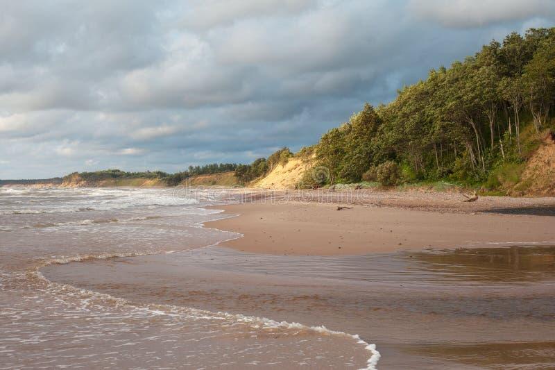 Côte de mer baltique. images libres de droits