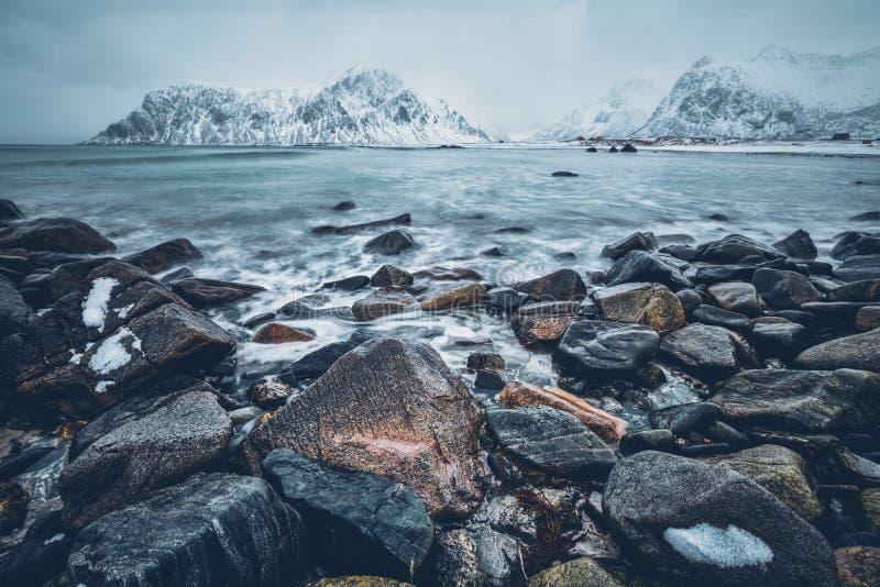 Côte de mer de Norvège photos stock