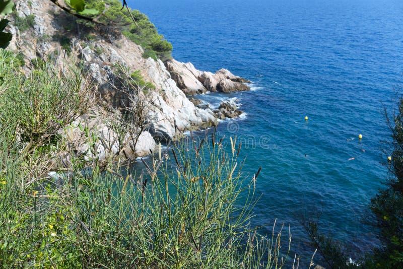 Côte de paysage de l'Espagne avec des roches et des usines sauvages photos libres de droits