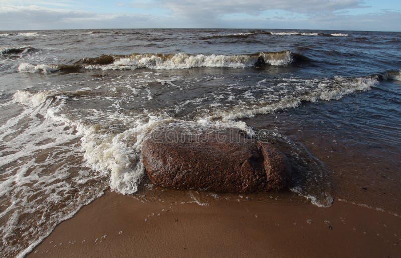 Côte du Golfe de Riga photographie stock