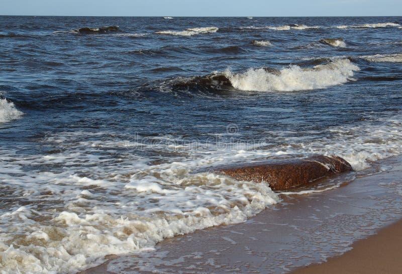 Côte du Golfe de Riga photo stock