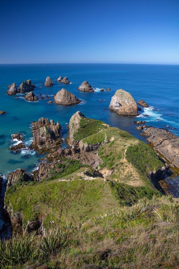 Côte du ` s Otago du Nouvelle-Zélande avec les îlots rocheux de pépites images libres de droits