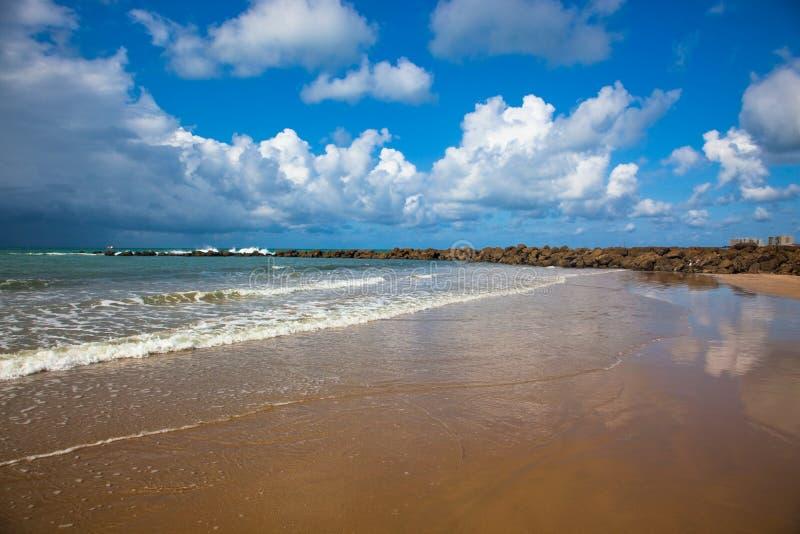 Côte océanique photo libre de droits