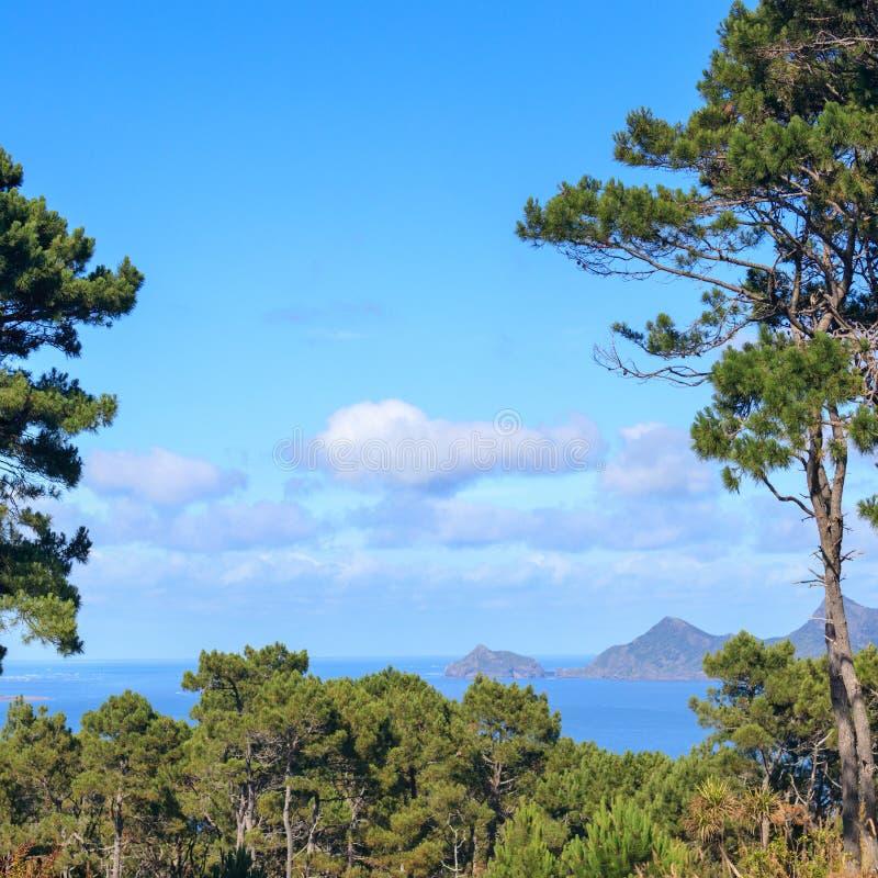 Côte ouest près d'Auckland, vue aérienne de point de Huia images libres de droits