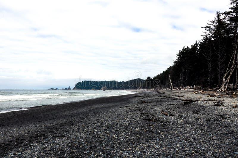 Côte Pacifique dans le matin brumeux en été, fond photos stock