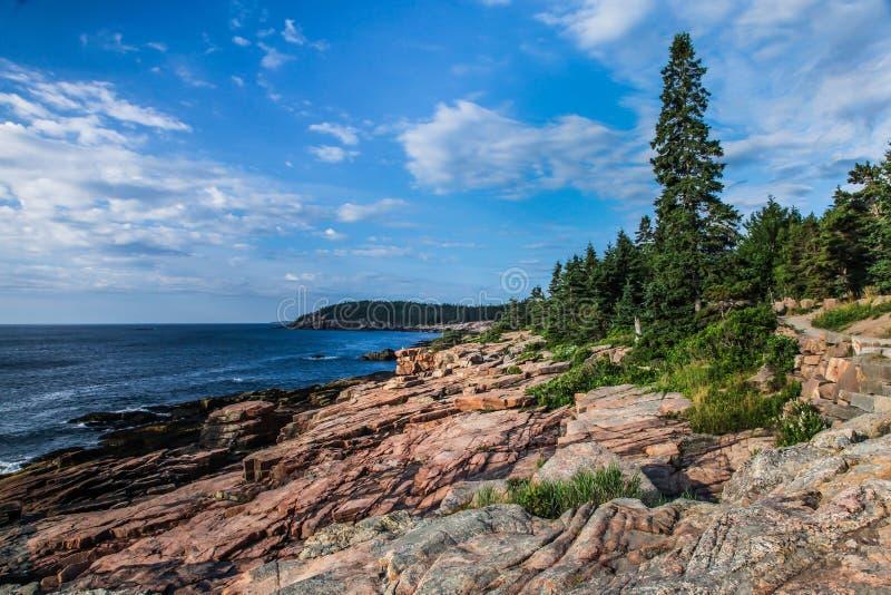 Côte rocheuse acadienne pendant l'été dans Maine photos libres de droits