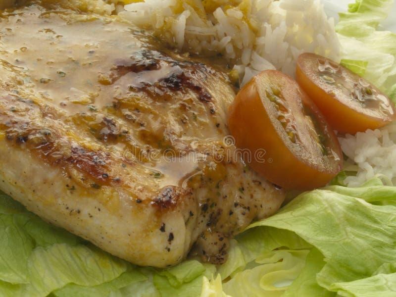 Côtelette de la Turquie avec du riz et des tomates photographie stock
