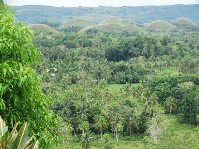 Côtes de chocolat, île de Bohol, Philippines images stock