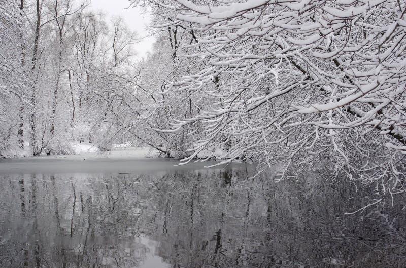 33c 1月横向俄国温度ural冬天 俄国 库存图片