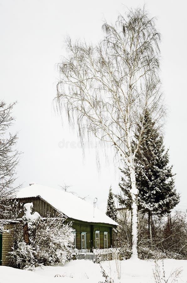 33c 1月横向俄国温度ural冬天 雪的木小屋 免版税库存照片