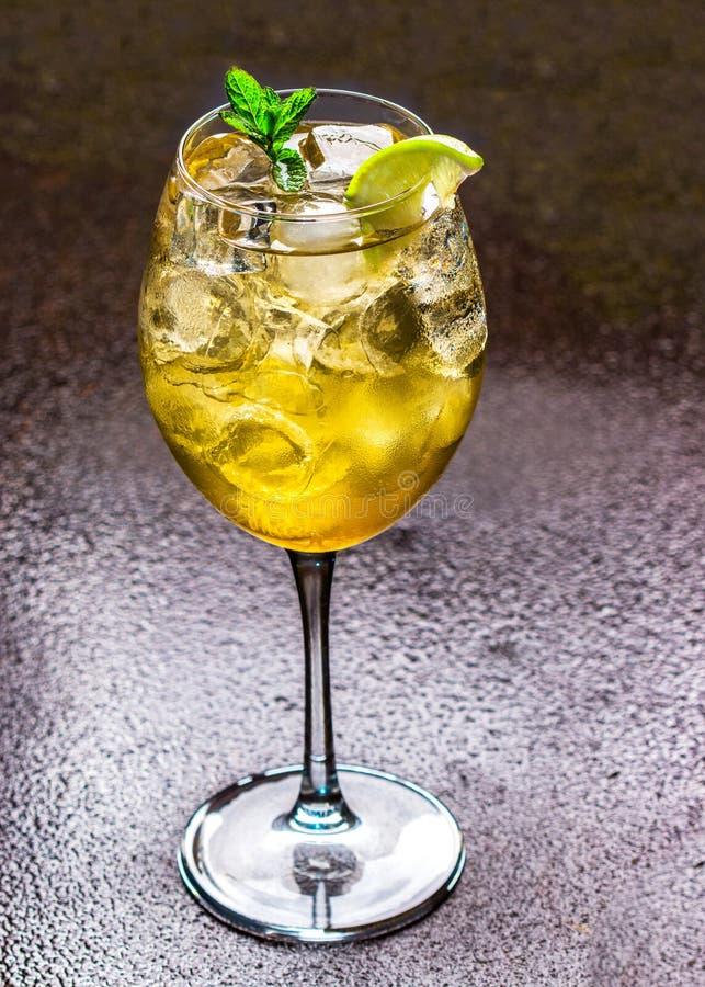 C?ctel fresco del verano con el cubo de hielo, la cal, las hojas de menta y el zumo de lima fresco fotografía de archivo libre de regalías