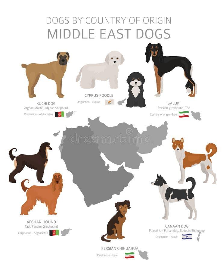 C?es pelo pa?s de origem Raças do cão de Médio Oriente Grupo dos c?es dos pastores, da ca?a, da reuni?o, do brinquedo, do funcion ilustração do vetor
