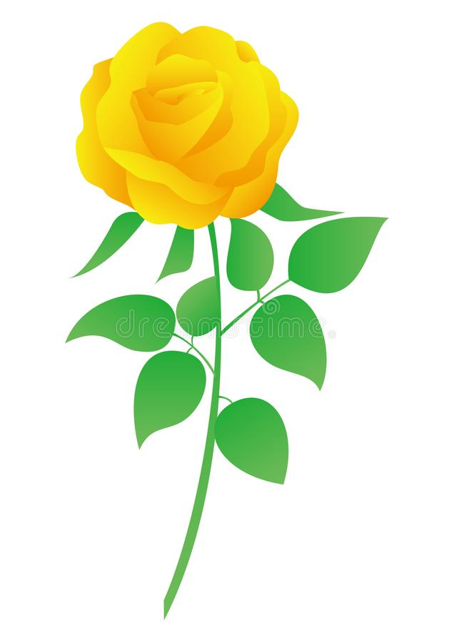 C'est une illustration de vecteur de rose de jaune illustration stock