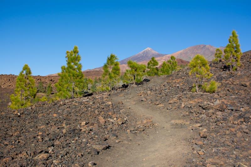 C=Footpath à Pico Viejo et à Pico del Teide Parque Nacional photo libre de droits