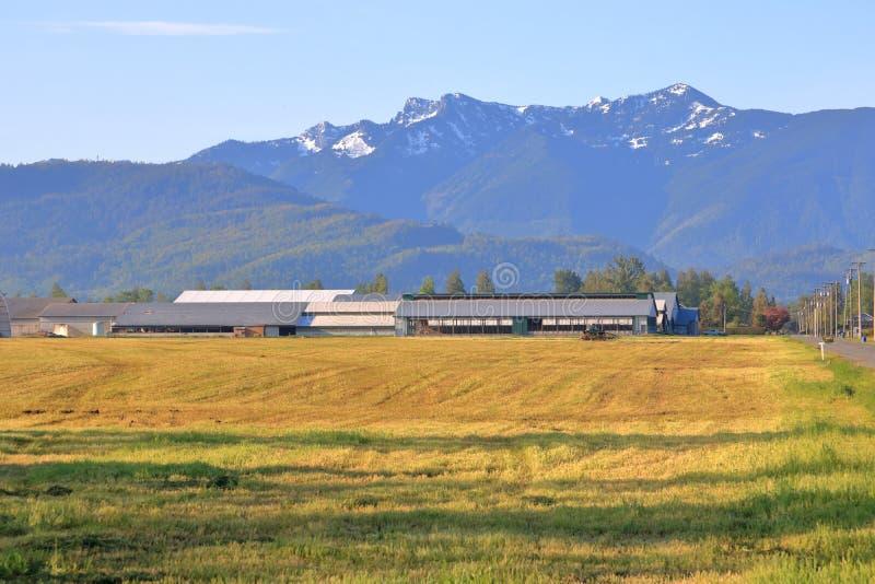 A.C. Fraser Valley District de Canadá fotos de archivo libres de regalías