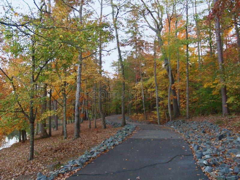 C. G. Hill Memorial Park. Colorful fall foliage along a walking trail at C. G. Hill Memorial Park in Pfafftown, North Carolina stock photos