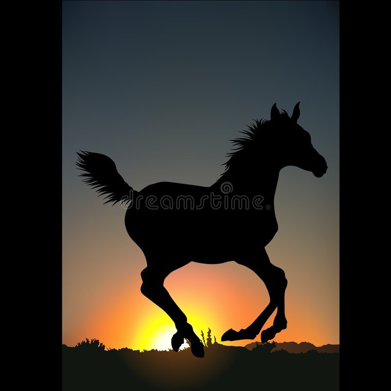 c-hästsilhouette royaltyfri illustrationer