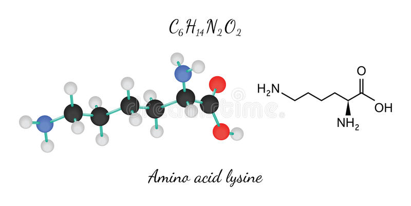 C6H14N2O2 Lysine amino zjadliwa molekuła ilustracji