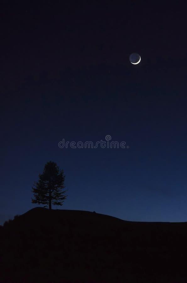 C przy noc zdjęcia royalty free