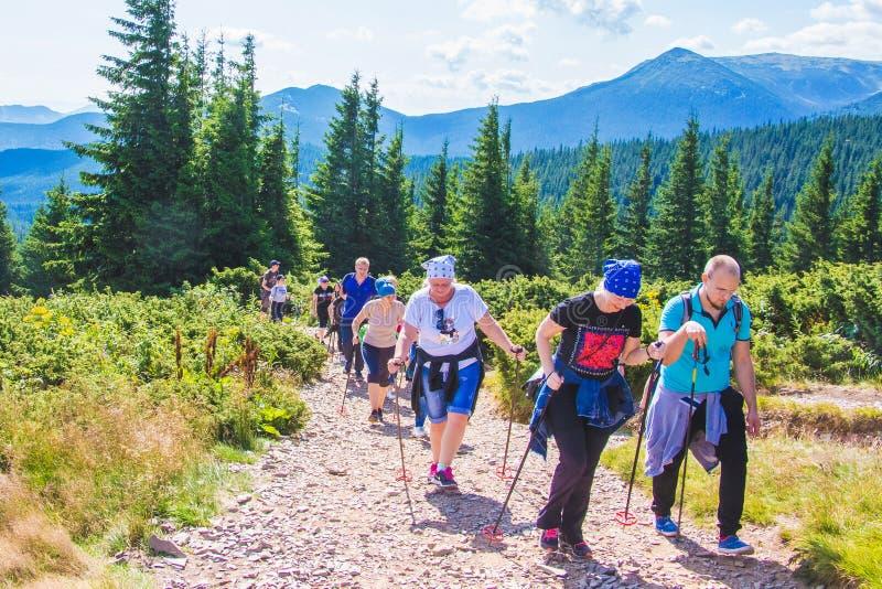 C?rpatos, Ucrania En julio de 2019 El subir al top del soporte Hoverla Camino duro al top del mountain_ imagen de archivo